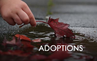 Attorney for Adoptions in Utah