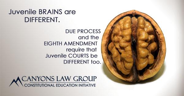 Juvenile Courts - Due Process - Eighth Amendment